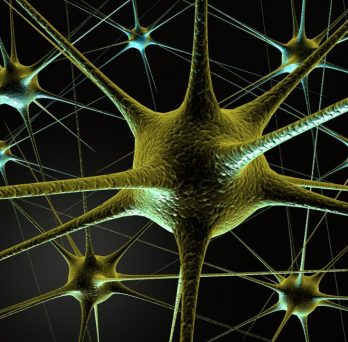 graphic image of brain neurons