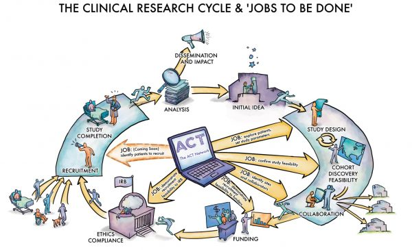 infographic showing ACT network clinical research workflow