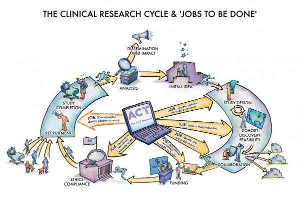 infographic of the clinical research cycle and jobs to be done