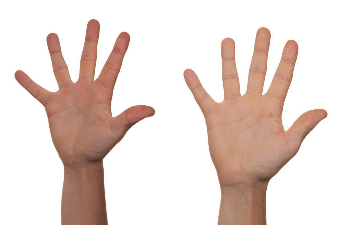 two raised hands