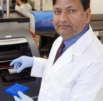 Subhash Pandey, director, UIC Center for Research in Alcohol Epigenetics. Photo: Joshua Clark.