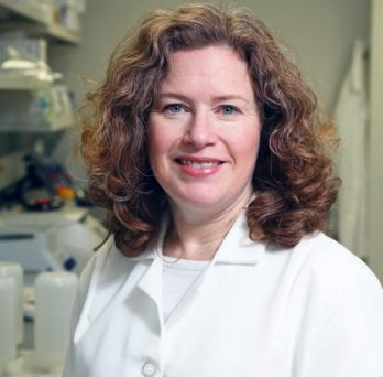 Amy Lasek, associate professor of psychiatry and anatomy and cell biology at the UIC College of Medicine.
